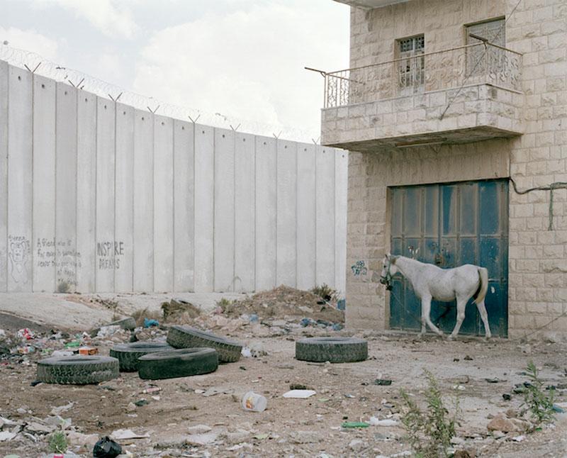 Bir Nabala, Palestine